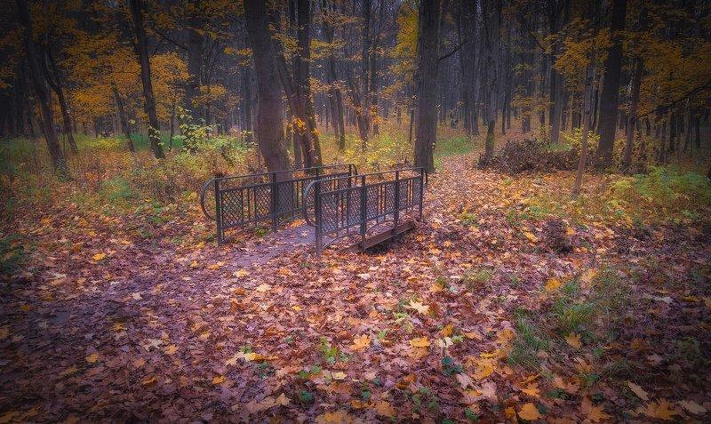 Парк. 31 октября.photo preview