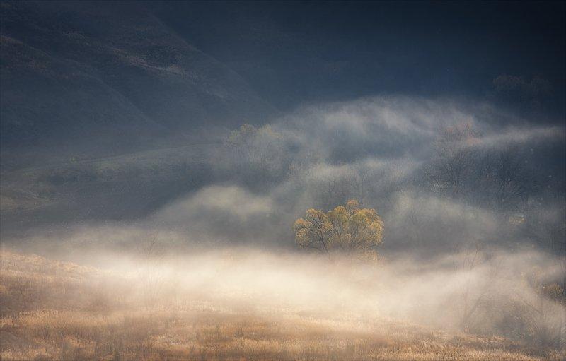 Солнечный ветер.photo preview