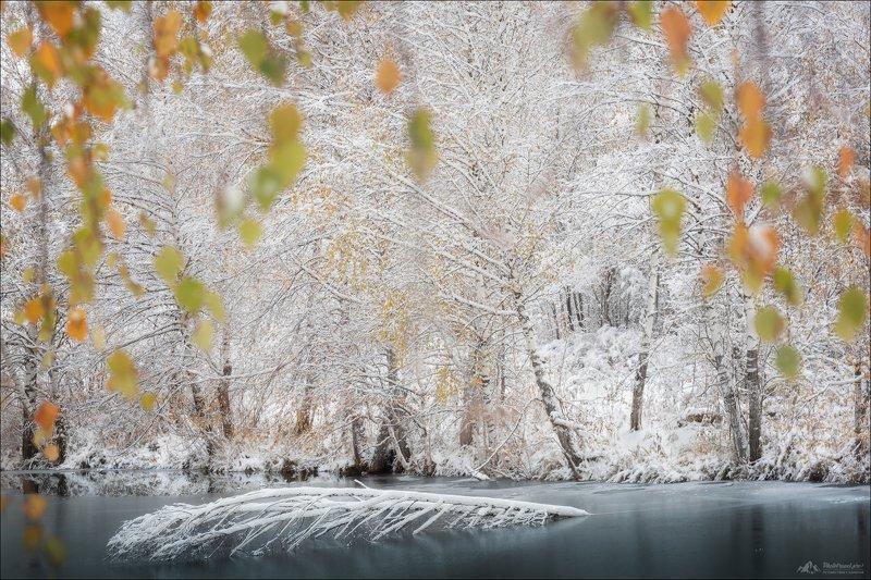 алтай, алтайский край, иллюзия, осень Иллюзия осениphoto preview