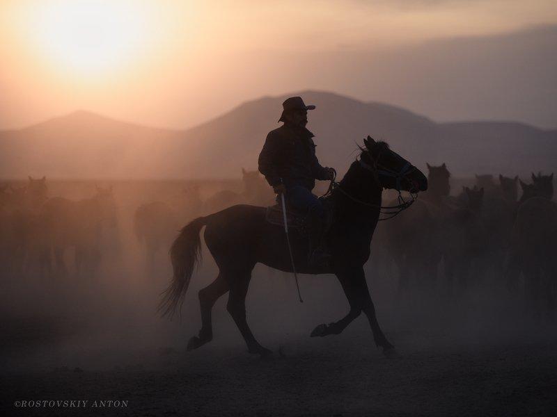 фототур, каппадокия, кайсери, лошади, табун, закат, Каппадокия   фототурphoto preview
