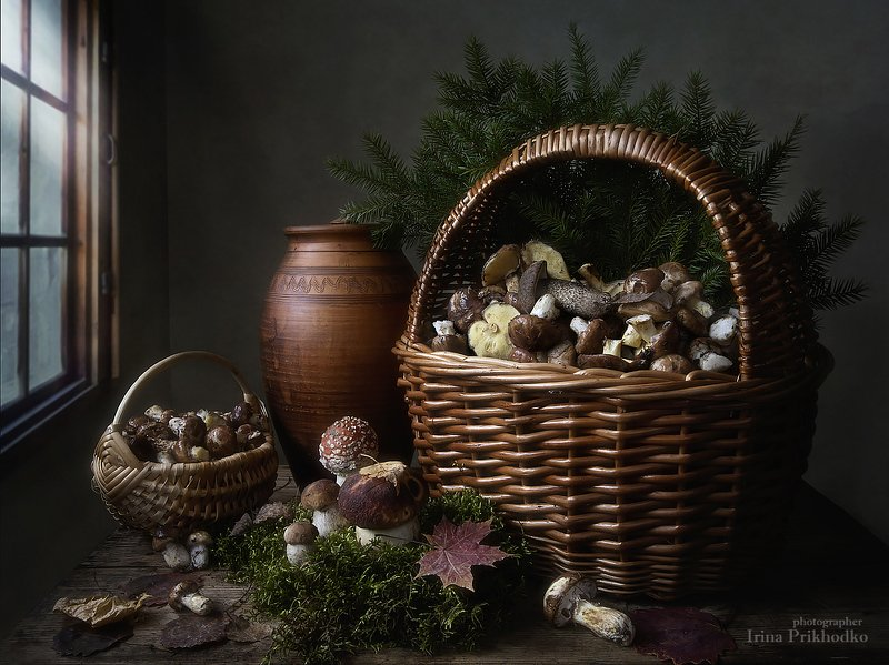 натюрморт, грибы, лесные,осень, художественная фотография Щедрые дары осеннего лесаphoto preview