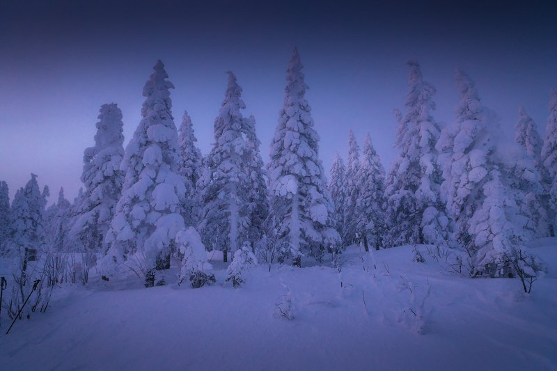 таганай, зима Тихо в лесуphoto preview