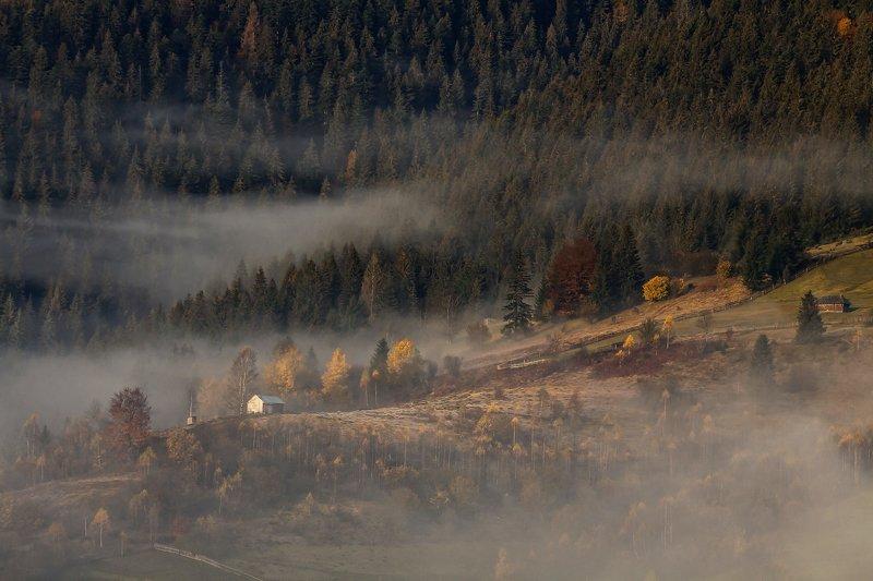 карпаты горы утро туман осень Осенняя история(2)...photo preview