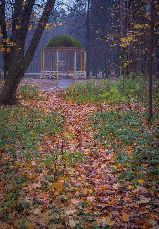 В парке ноябрьphoto preview