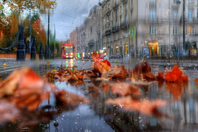 октябрь....photo preview