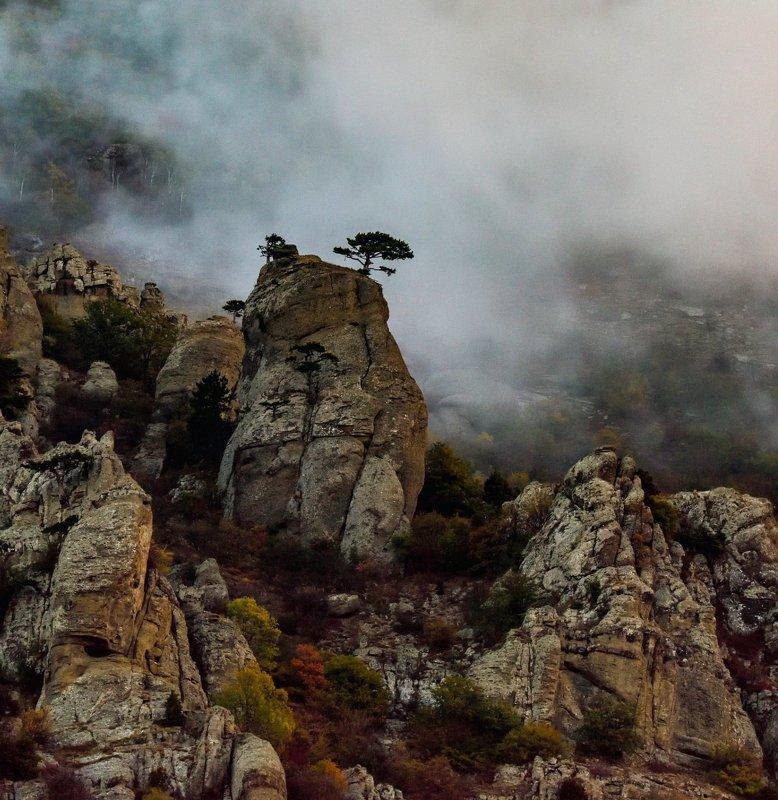 пейзаж, туман, демерджи, крым Планета Пандораphoto preview