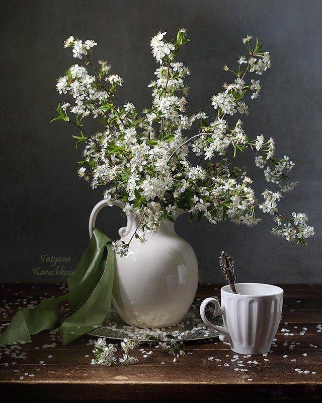 натюрморт, цветы,весна, белый Вишня цвететphoto preview