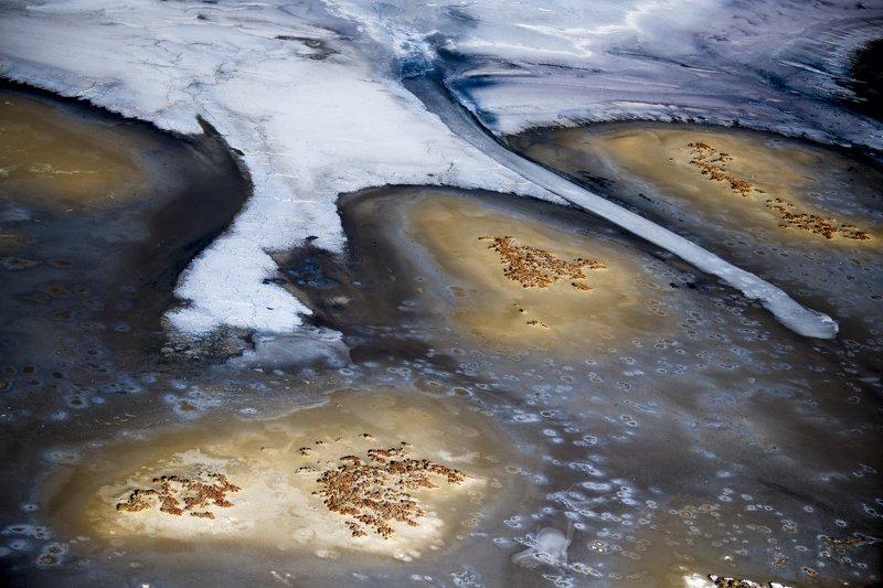 казахстан, балхаш, прибалхашье, солончаки, озёра, солончаковые озёра, солевые озёра, Солончаковые озёра Прибалхашьяphoto preview
