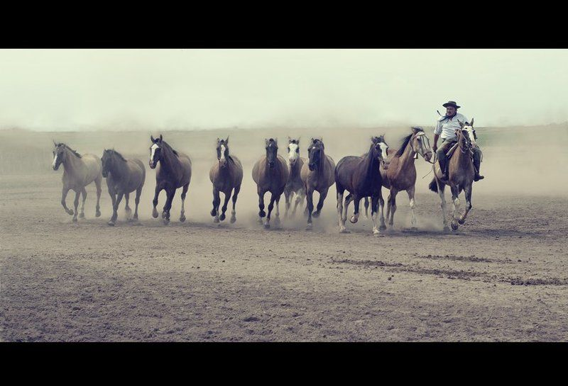 Аргентинских гаучоphoto preview
