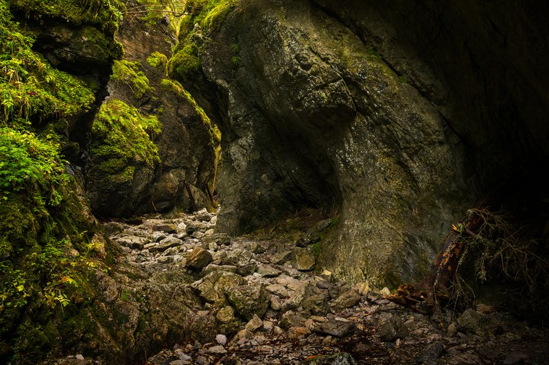 nature, autumn, landscape, colors, ravine, tatry, morning The Cracow Ravine - Tatryphoto preview