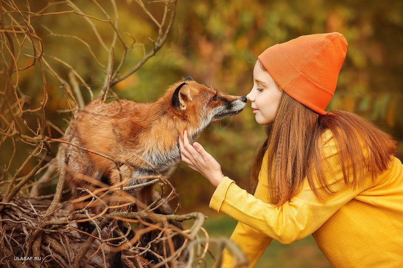 лиса, fox, art photo, art, портрет, осень, autumn, ребенок, девочка, girl, животное, друзья, happy, любовь, love, 105mm, kid, children, beautiful, закат, nikon ***photo preview