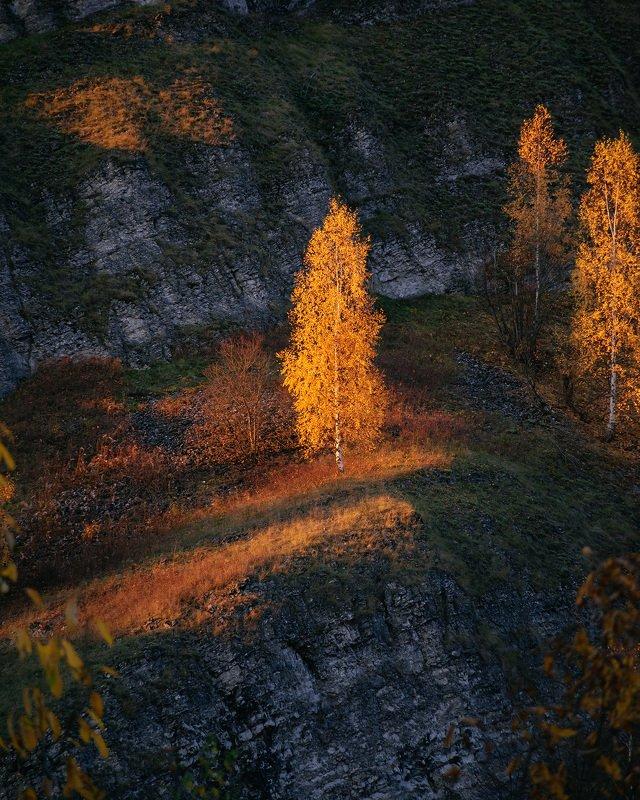 пермский край, осень, рассольная, россия, урал, береза, вечер, закат, пейзаж, скала В лучах закатаphoto preview