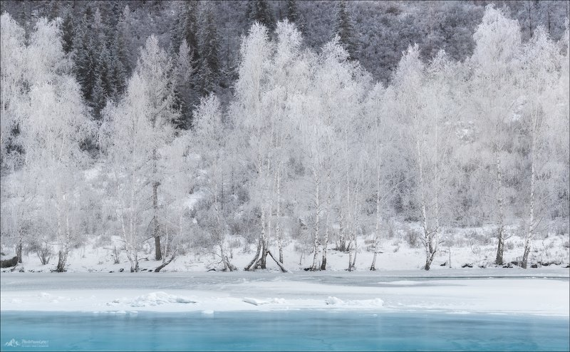 алтай, горный алтай, зима, катунь Сибирские кружеваphoto preview
