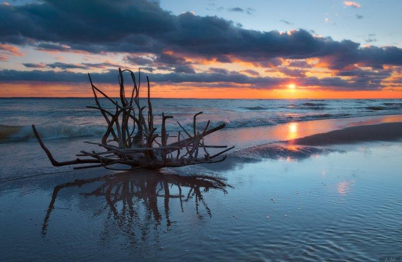 море, закат, вечер, солнце, тучи, отражение, волны, seascape, sun. clouds, light, reflections, waves, sea, evening, sunset, colors, blue \