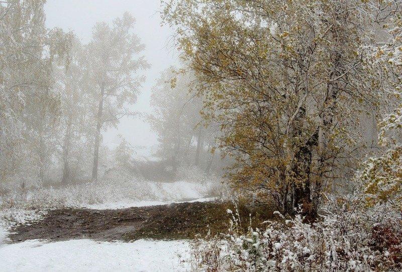 красноярск, торгашинский хребет. Встреча осени и зимы.photo preview