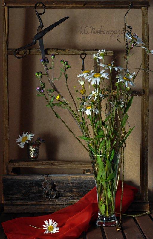 ромашки,цветы,бокал,ножницы,платок,полка ***photo preview