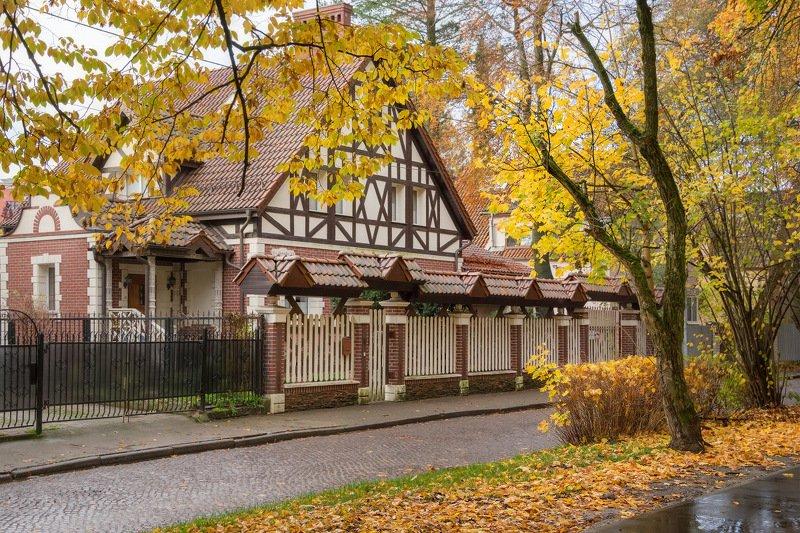 калининград, город, осень, архитектура Осень в городеphoto preview