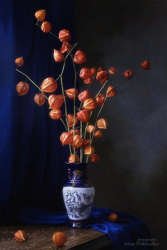 натюрморт, осень, настроение,контраст, сухоцветы, букеты, физалис, китайская ваза Осенняя икебанаphoto preview