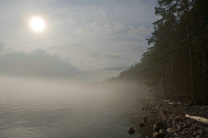 россия, карелия, онежское озеро, туман, солнце, вечер, вода, облака, пейзаж, природа, russia, karelia, lake onega, fog, sun, evening, water, clouds, landscape, nature photo preview
