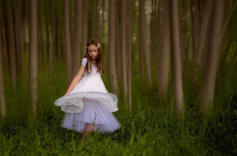 Forest fairyphoto preview
