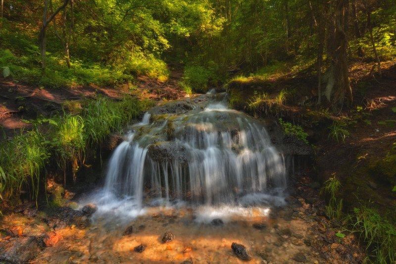 Вода летом блеск трава деревья солнце  Летом у ручьяphoto preview