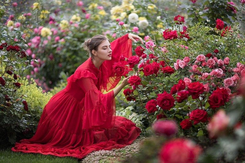 #rose #garden #portrait #bloom Rose garden in the desertphoto preview