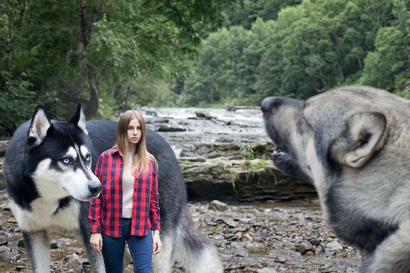 #husky #dog #girl #waterfall По мотивам фильма \