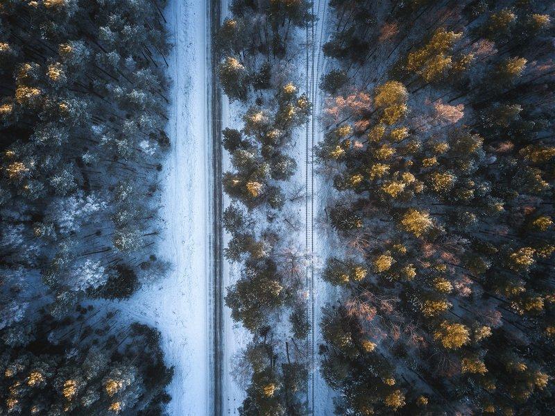 пермский край, зима, осень, пейзаж, россия, урал, графика, дорога, лес, снег Два путиphoto preview