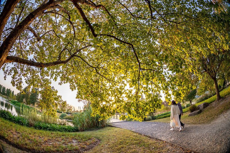 park, landscape, people, autumn, fisheye Entering to the autumnphoto preview