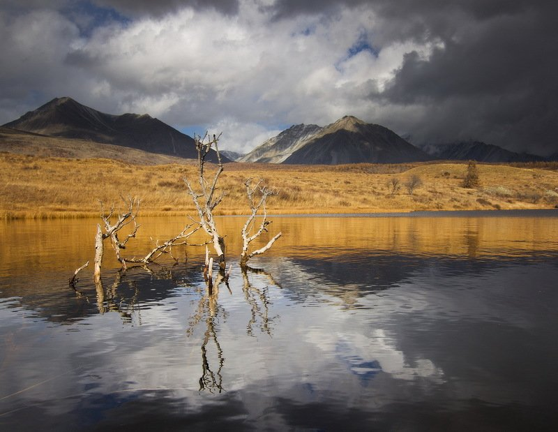 Осень Монголииphoto preview