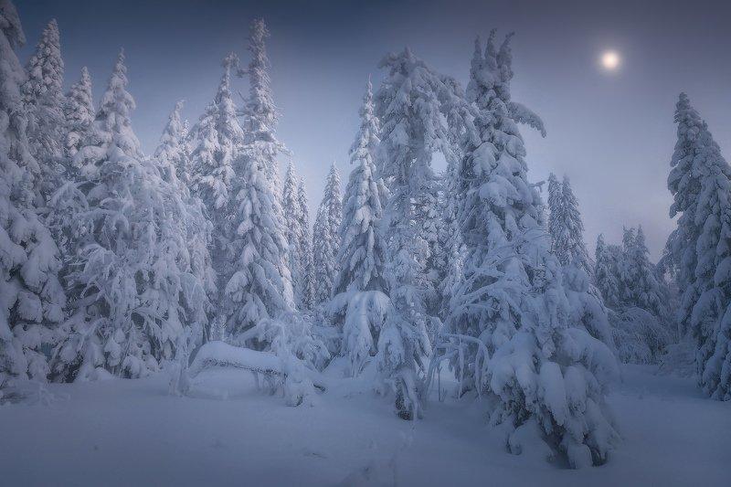 таганай, зима, снег, урал Под лунойphoto preview
