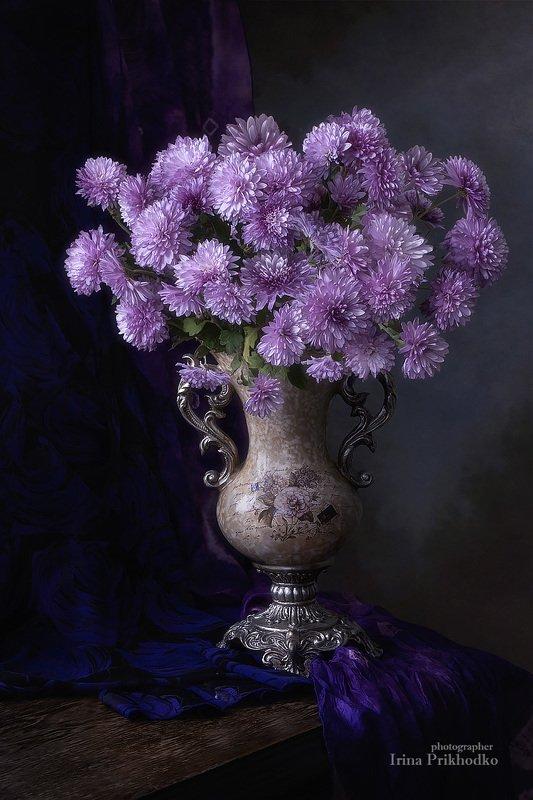 натюрморт, осень, хризантемы, букет, цветы, садовые, винтажный, художественное фото Осень в сиреневых тонахphoto preview