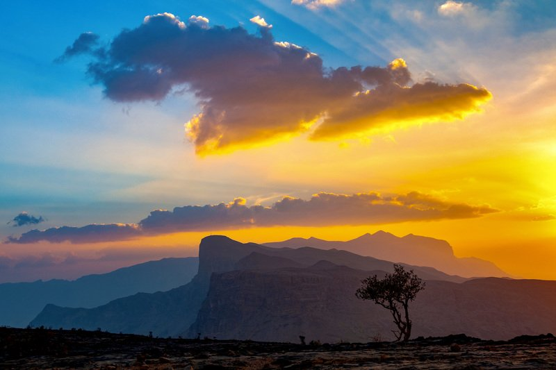 colours nature sunset mountain sky tree oman  Mother Naturephoto preview