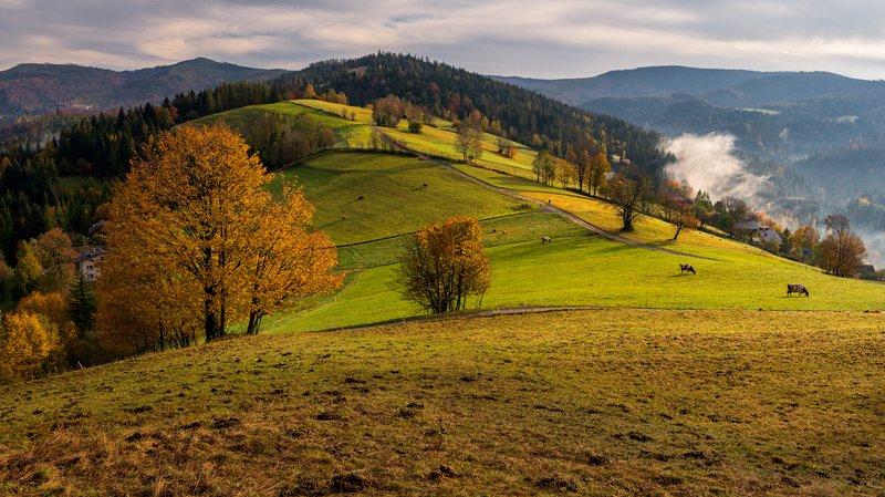 landscape, wisła, poland, mountains Wisła - Cieńkówphoto preview