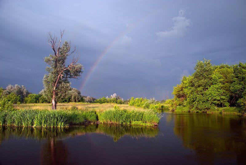 речка , дерево , радуга после грозы - 2photo preview