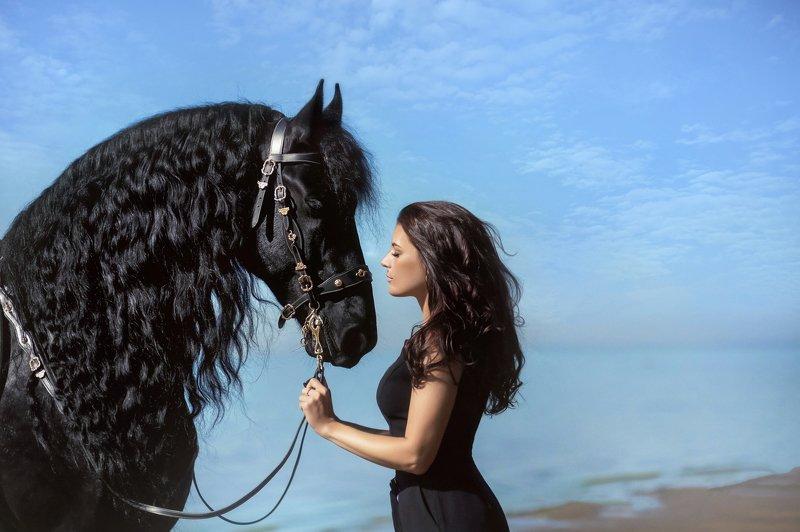Любовь к коню