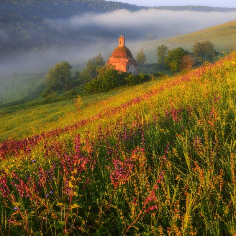 #лето #солнце #пейзаж #цветы #трава #туман #храм Июльские туманы photo preview