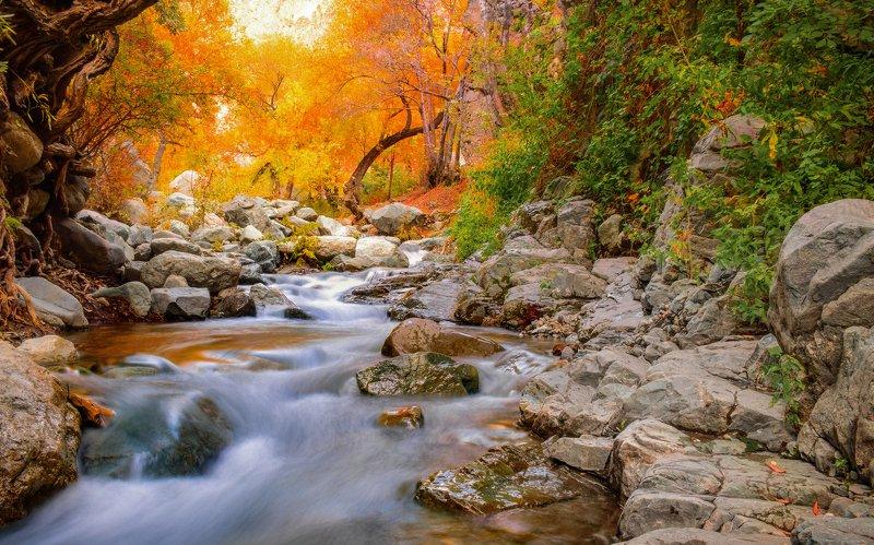 #landscape #longexposure #river #waterfall #travel Fall in tehranphoto preview