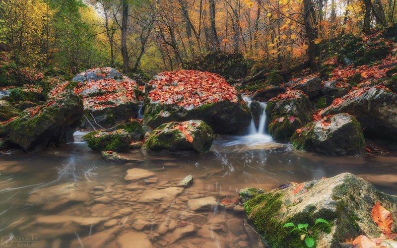 Насорил октябрь листьями...