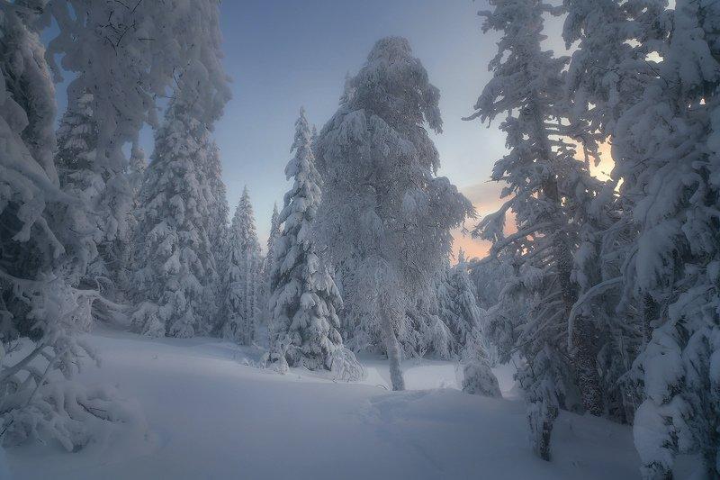 таганай, урал, зима Зимним днемphoto preview