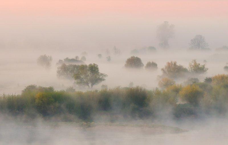 laqndscape fog ~~~~photo preview
