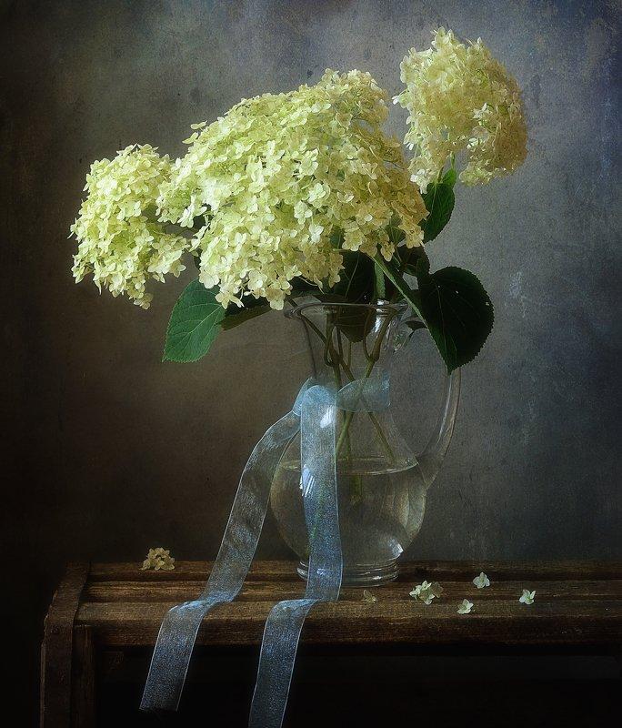 натюрморт,цветы,гортензия с гортензией...photo preview