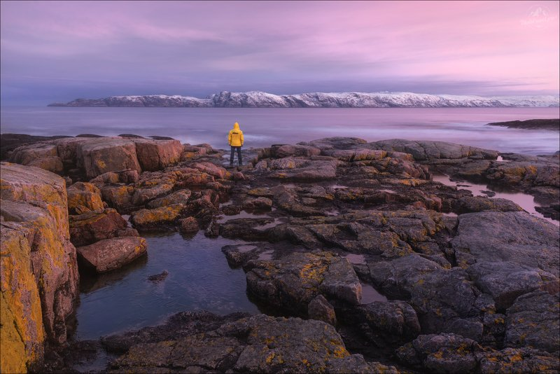 Териберка, Кольский полуостров, Баренцево море, Ледовитый океан На пляжах Баренцева моря ..photo preview