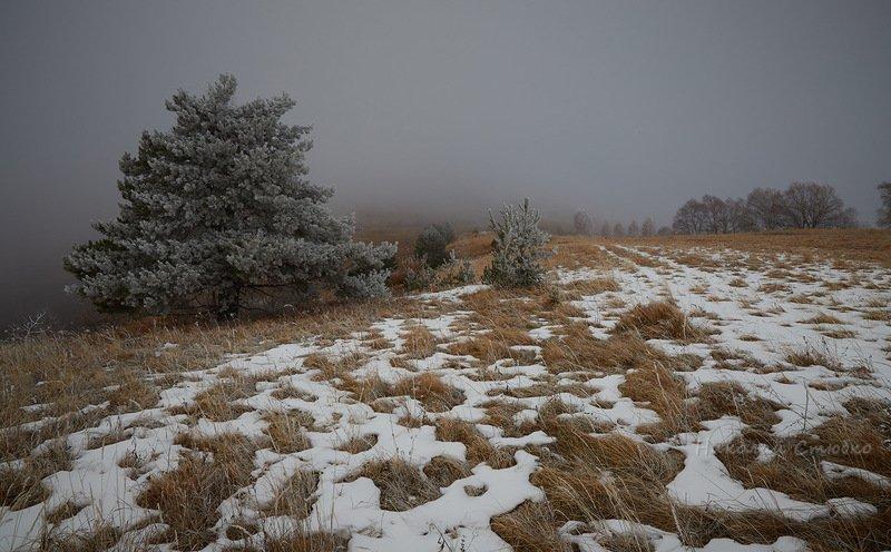 кавказ горы зима туман Туманно 2photo preview
