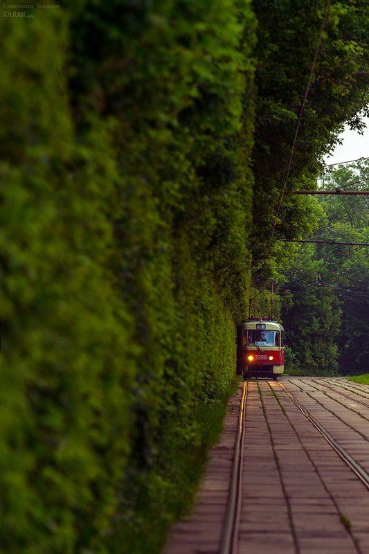 Трамвайчик с улицы Царёваphoto preview