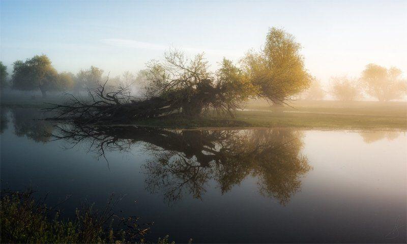 вертячка, пейзаж, природа, рассвет, тишина, туман Утро уходит с туманом...photo preview
