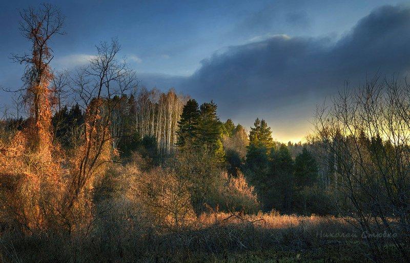 кавказ горы осень деревья закат Сказка уходящего дняphoto preview