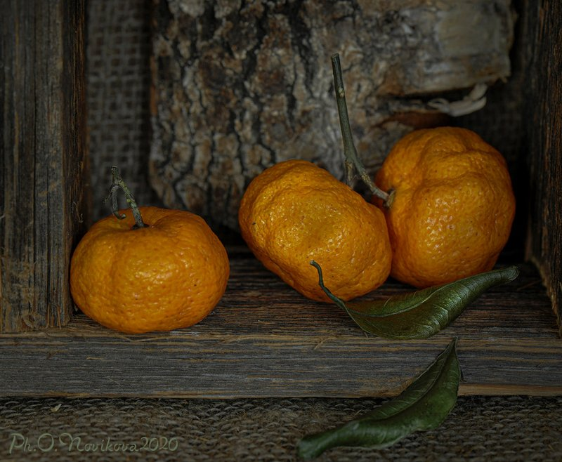 мандарины,листки,кора ***photo preview
