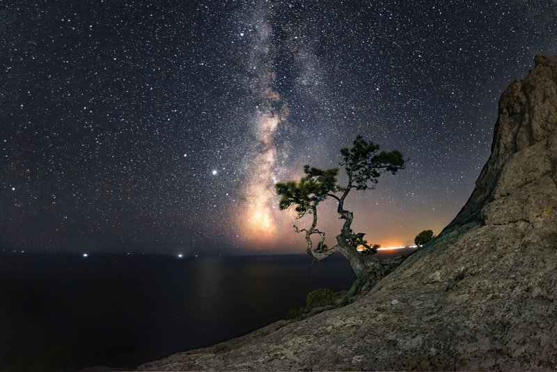 звезды, млечный путь, скала, сосна, море, меганом про звездные ночи в Крыму )photo preview