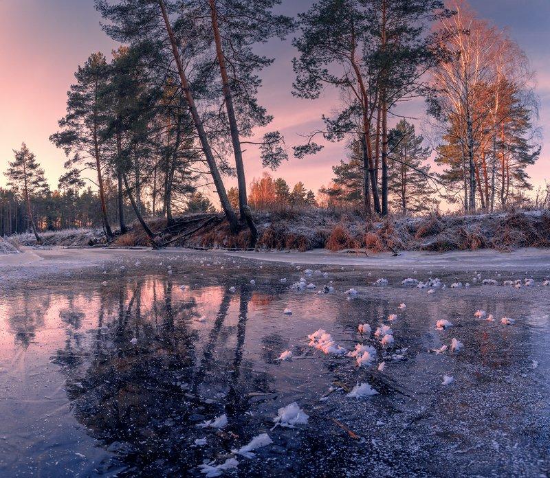 Лёд Шередари ...photo preview